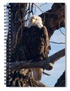 Lone Eagle Spiral Notebook