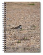 Lone Killdeer Spiral Notebook