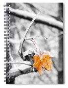 Lone Leaf Spiral Notebook