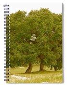 Lone Oaks Spiral Notebook