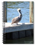 Lone Pelican On Pier Spiral Notebook