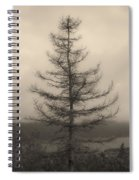 Lone Pine And The Bras D'or Spiral Notebook