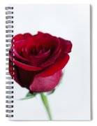 Lone Rose Spiral Notebook