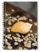 Lone Snail Spiral Notebook