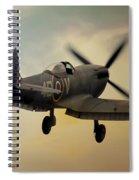 Lone Spitfire Spiral Notebook