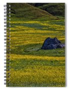 Lone Stone Spiral Notebook