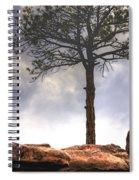 Lone Tree 11351 Spiral Notebook