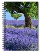 Lone Tree In Lavender Spiral Notebook