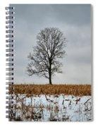 Lone Tree In Winter Spiral Notebook
