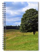 Lone Tree On Grassy Knoll Spiral Notebook