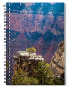 Lone Tree On Outcrop Grand Canyon Spiral Notebook