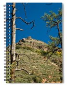 Lone Tree On The Mountain Spiral Notebook