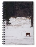 Lonely Horse Spiral Notebook