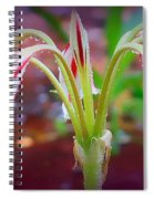 Lonely Lilly Spiral Notebook