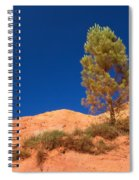 Lonely Pine On The Ocher Hill Spiral Notebook