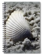 Lonely Shell Spiral Notebook