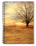 Lonely Tree At Sunset Spiral Notebook