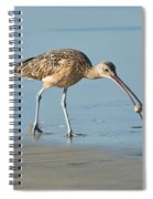 Long-billed Curlew Catching Crab Spiral Notebook