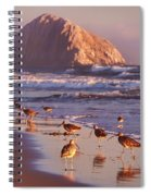 Long Billed Curlew - Morro Rock Spiral Notebook
