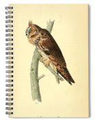 Long Eared Owl Spiral Notebook