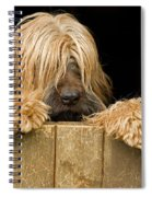Long-haired Dog Spiral Notebook