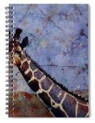 Long-neck Bottled Spiral Notebook