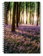 Long Shadows In Bluebell Woods Spiral Notebook