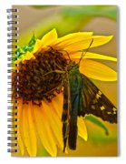 Long-tailed Skipper Spiral Notebook