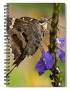Long-tailed Skipper Photo Spiral Notebook