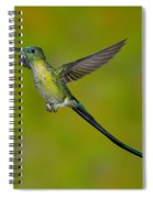 Long-tailed Sylph Spiral Notebook