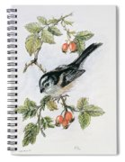 Long Tailed Tit And Rosehips Spiral Notebook
