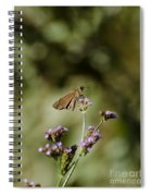 Long-winged Skipper Butterfly Spiral Notebook