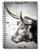 Longhorn Spiral Notebook