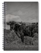 Longhorn Of Bandera Spiral Notebook