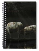 Longhorns Reflections At The Pond Spiral Notebook
