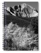 Longs Peak 14256 Ft Spiral Notebook