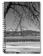 Longs Peak Geese Bw Spiral Notebook