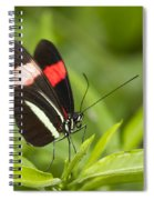 Longwing On A Leaf Spiral Notebook