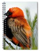 Lonley Bird Spiral Notebook