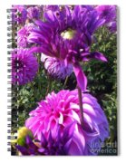 Look At Me Dahlia Flower Spiral Notebook