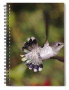 Look At Meeeeee Spiral Notebook