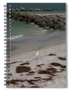 Look Back Bird Spiral Notebook