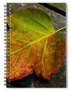 Look Down 3 Spiral Notebook