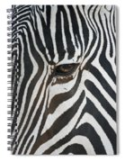 Look Into My Eye Spiral Notebook