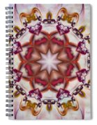 Look Into The Center Spiral Notebook