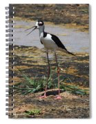 Look Out For That Egret- Mother Stilt Said Spiral Notebook