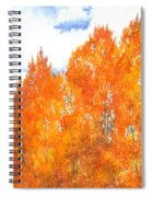 Look To The Heavens Spiral Notebook