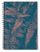 Looking At Ferns Another Way Spiral Notebook