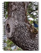 Looking At The Gorge Spiral Notebook