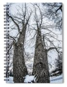 Looking At Tree Tops After A Winter Snow Storm Spiral Notebook